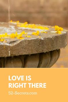 Learn more about love through Love Quotes at 52-Secrets with advice, love, and hope from the experts. #lovequote #quotestoliveby Deep Quotes About Love, Quotes To Live By, Lesson Learned Quotes, All About Mom, Writers Notebook, Learning Quotes, Perfect Love, Mood Quotes, Better Life