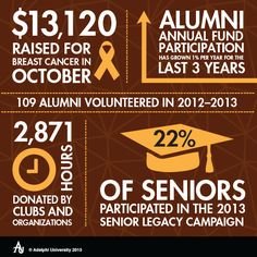 Infographic: Adelphi Community Service and Giving