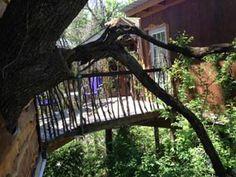 Savannah's Meadow Treehouse