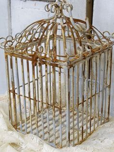 Heavy wrought iron bird cage French provincial by AnitaSperoDesign, $110.00