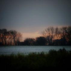 Solopgang ved Assens #visitfyn #fyn #nature #visitdenmark #naturelovers #nofilter #natur #denmark #danmark #dänemark #landscape #nofilter #assens #mitassens #vildmedfyn #fynerfin #assensnatur #vielskernaturen #visitassens #forrest #instapic #tree #picoftheday #november #sunset