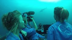 Submarine Diving in Deep-Sea Galápagos: #bestjobever