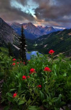 Wow ... Washington State by Trevor Anderson