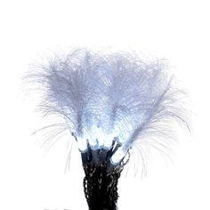 Kurt Adler 20-Light LED Clear Fiber Optic Light Set