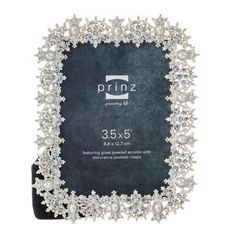 isabelle jeweled collection picture frame 35x5
