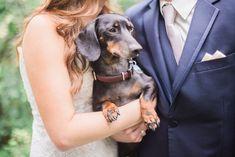 Winnipeg Wedding Photographer, Pineridge Hollow Wedding, Pineridge Hollow, Dogs at Weddings, Wedding Photos with dogs, Keila Marie Photography