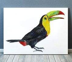 Cute Watercolor print. Beautiful Bird poster for your home and office. Lovely Toucan art. Nice hand drawn Animal print.  BUY 1 GET 1 FREE - use