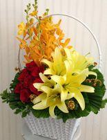 gio_hoa_sinh_nha, dienhoa Chúng tôi đã tạo ra những giỏ hoa đơn giản, để phù hợp với nhiều đối tượng tặng. http://www.dienhoa360.com/hoa-gi%E1%BB%8F.html?start=32