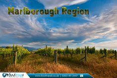 Marlborough Region, New Zealand:  |    The #Marlborough #Region, commonly known simply as Marlborough, is one of the regions of New Zealand, located in the #northeast of the #South #Island.  |    Source: https://en.wikipedia.org/wiki/Marlborough_Region  |    #newzealand #marlboroughregion #flights #travel #bestflightoffers #nz #kiwitravel #flightstonewzealand #cheapflights #cheapflightstonewzealand #travelagents #travelagentsinuk  |    New Zealand #TravelExperts: http://www.kiwitravel.co.uk/