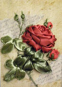 Rosa majesturosa                                                                                                                                                     Más