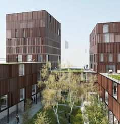 LAN:  75 apartment complex