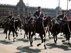Dragoons of the Heroic Military College (Heroico Colegio Militar) riding through the Zócalo in Mexico City at the 2011 Mexican Independence Day Parade.