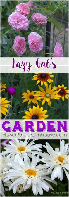Lazy Gal's Garden Guide, how to get a fabulous garden with less work and time.  You can do it! http://FlowerPatchFarmhouse.com
