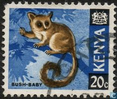 Postage Stamps Kenya 1966 Republic Animals Lesser Bushbaby SG 23 Fine Used Scott 23 For Sale Take a look Bizarre Animals, Slow Loris, Stamp Catalogue, First Day Covers, My Themes, Kenya, Tanzania, East Africa, Mail Art