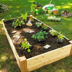 Grow a vegetable garden in raised beds. Design Tip: Keep It Narrow: Build your raised beds so you can easily reach the middle from both sides. Most raised beds are 4 feet across because the average person can easily reach about 2 feet.