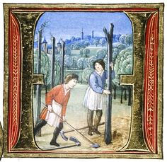 Douce Pliny - Florentine Venice 1476-28