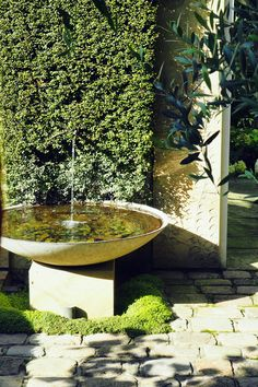Why You Should Invest In Simple Water Features For Your Home Garden – Pool Landscape Ideas Backyard Water Feature, Ponds Backyard, Garden Pool, Backyard Waterfalls, Koi Ponds, Shade Garden, Outdoor Water Features, Water Features In The Garden, Modern Outdoor Fountains