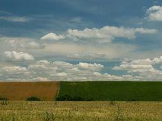 PRANOSTIKA NA PONDELOK 22.5.: Keď sa z jari na poli mokré miesta ukazujú, suché leto predpovedajú.