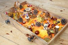 Create an Autumn woods sensory small world play in a drawer for hours of fall themed imaginative play and learning for kids! Sensory Activities Toddlers, Autumn Activities For Kids, Fall Preschool, Infant Activities, Crafts For Kids, Sensory Play, Math Activities, Pre K Pumpkin Crafts, Autumn Crafts