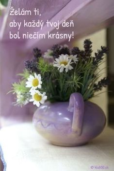 Birthday Wishes, Happy Birthday, Good Morning, Plants, Blog, Decor, Funny, Google, Quotes