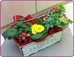 flowers bed - arrangement for special ocasions, good for decorating the house, a gift for a friend or a loved one.