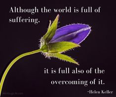 Overcoming Helen Keller, Inspirational Quotes, World, Life Coach Quotes, Inspiring Quotes, The World, Quotes Inspirational, Inspirational Quotes About, Encourage Quotes