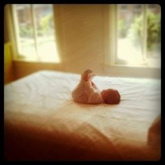 Inspirational pictures baby-love personal-development personal-development