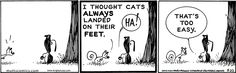 MUTTS by Patrick McDonnell  5-22-15