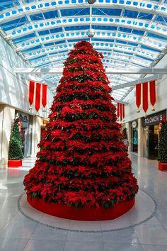 Piarco International Airport, Trinidad - Christmas tree Christmas Crafts, Christmas Decorations, Christmas Tree, Holiday Decor, Caribbean Christmas, Trinidad And Tobago, International Airport, Awesome, Decor Ideas