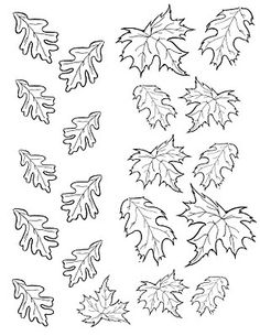 Fall Leaves Coloring Pages, Leaf Coloring Page, Colouring Pages, Printable Coloring Pages, Coloring Pages For Kids, Coloring Books, Autumn Leaf Color, Autumn Leaves, Oak Leaves