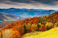 El bosque de Muniellos en otoño,  en Asturias