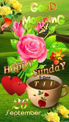 Happy Sunday, Good Morning, Buen Dia, Bonjour, Good Morning Wishes