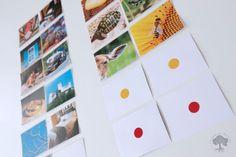 Las Rimas en el Método Montessori + Cuentos Rimados + Imprimible – Creciendo Con Montessori Polaroid Film, School, Activities, Proposals, Printable, Vocabulary, Writing, Short Stories