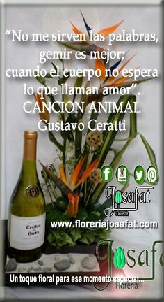 No me sirven las palabras gemir es mejor cuando el cuerpo no espera lo que llaman amor. #canciónanimal – #GustavoCeratti  I do not serve the words moaning is better when the body does not expect what they call love. #AnimalSongs - #GustavoCeratti