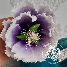 Open peonie Sugar Flowers, How To Make Cake, Cake Designs, Succulents, Plants, Cake Templates, Flora, Succulent Plants, Plant