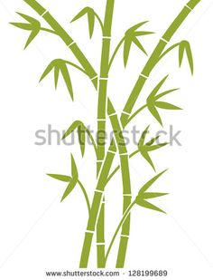 green bamboo stems (bamboo vector illustration, bamboo leaves, bamboo branches, silhouette of bamboo trees)