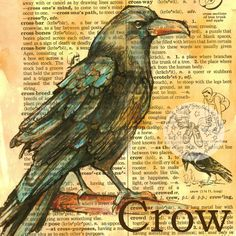 """""""Crow""""   5"""" x 5"""" Mixed Media Drawing on Distressed, Dictionary Page   I have always been intrigued by crows. They are such ordinary bi..."""
