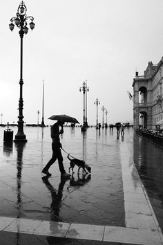 rain... Rain, dark clouds, dismal, cold. This is a description of a cold winter rainy day !