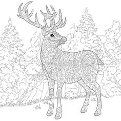 Stock vector of 'Zentangle stylized cartoon deer (stag, christmas reindeer). Hand drawn sketch for adult antistress coloring book page, T-shirt emblem, logo or tattoo with doodle, zentangle and floral design elements.'
