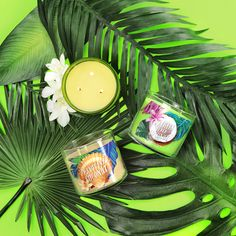 We're going cocoNUTS for NEW Candles!
