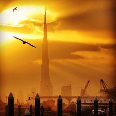 By @fareedi Sunset in Dubai: magicalarabia