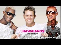 Thiaguinho e Os Hawaianos - Festinha - Musica Nova 2014