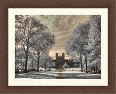 Louis infrared by FengShuiPhotography Spanish Home Decor, Infrared Photography, University Of Washington, Forest Park, Photo Tree, Gothic Architecture, Great Photos, Feng Shui, Fine Art Photography