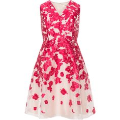 Studio 8 Pink / Pink Plus Size Floral print A-line dress (€120) ❤ liked on Polyvore featuring dresses, pink, plus size, v-neck dresses, womens plus dresses, v neck dress, plus size floral dresses and women plus size dresses