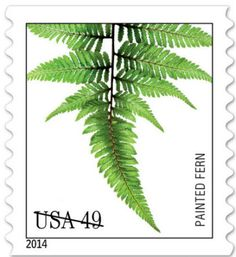 U.S. Postal Service launches fern stamps