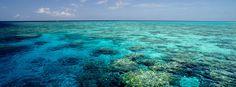 Australia in March hidden gems, culture, relaxing, beaches, wildlife