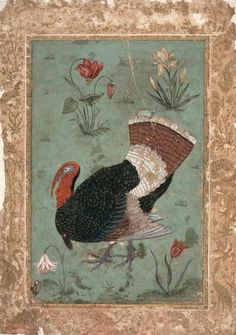 Turkey, Mughal Prints by Indian School | Magnolia Box
