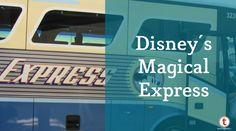 Disney's Magical Express FAQ Update - TouringPlans.com Blog