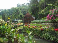Krisdadoi #Resort in #Chiangmai