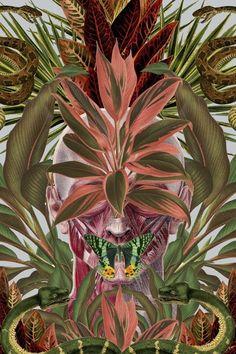 #tropical #beach #ss15 #ss14 #fashionlook #tropicalfashion #tropicaltrend #trendy #fashion #tropicalclothes #tropicalleafs #tropicaltree #paradise #summer #pattern #tropicalpattern #usa